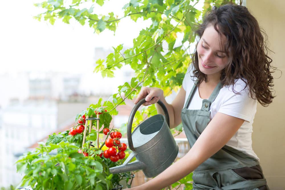 Una forma de vida más saludable y eficiente